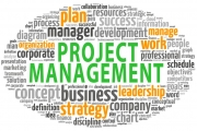 IT Consulting - Project management